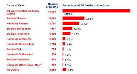 10 Leading Causes of Violence-Related Injury Deaths, United States, 2006